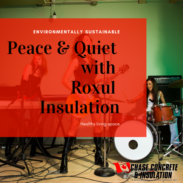 Get Peace and Quiet from Chase Insulation with Roxul